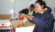 Xuất khẩu trái cây: Khiêm tốn