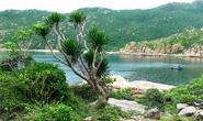 Trên 166 tỉ đồng bảo tồn Vườn Quốc gia Núi Chúa