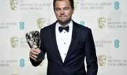 Năm của Leonardo DiCaprio
