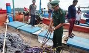 Hai tàu nước ngoài đâm chìm tàu cá của ngư dân ở Hoàng Sa