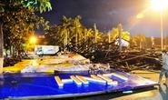 """""""Bức tường Tiger"""" hàng chục tấn sập giữa quảng trường Quảng Ngãi"""