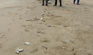 Cá chết tiếp tục trôi dạt trải dài 3km vào biển Quảng Bình
