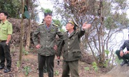 Đình chỉ 5 cán bộ  kiểm lâm trong vụ phá rừng Sơn Trà