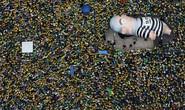 Brazil: Tổng biểu tình đòi lật đổ tổng thống