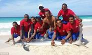 Bị lôi lên bờ chụp hình, cá mập chết thảm