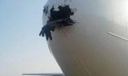 Bị chim đụng thủng mũi, máy bay vẫn hạ cánh an toàn