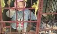 """Bé 3 tuổi bị mẹ nhốt trong chuồng chó vì """"làm ồn"""""""