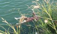 Người đi câu hoảng hồn thấy thi thể dưới hồ Đá