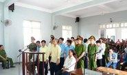 Đà Nẵng: Nguyên trưởng Trạm Bảo vệ rừng Cà Nhông hầu tòa
