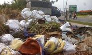 Đổ rác bừa bãi