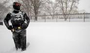 Bão tuyết hoành hành, 19 người thiệt mạng