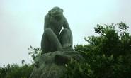 Từ khỉ núi đến khỉ chùa
