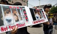 Hàng chục triệu người ngăn chặn lễ hội thịt chó