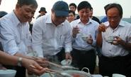 Chủ tịch Đà Nẵng đối thoại, ăn cá cùng ngư dân