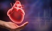 Ăn nhiều đường dễ bị đau tim