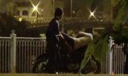 Trộm cắp ở cầu Mống
