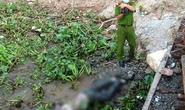 Tìm tung tích thi thể nam giới nổi trên sông