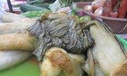 Lại phát hiện 7/7 mẫu dưa cải có chứa chất cấm