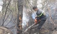 Hơn 100 ha rừng thông ở Hải Vân bị cháy rụi