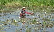 Vụ vượt biên xiệt cá ở Campuchia: Thêm nạn nhân tử vong