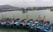 Tàu Trung Quốc khống chế, cướp phá tàu cá Quảng Nam?