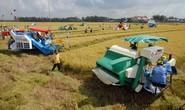 Nông nghiệp khó giàu vì... thiếu đất
