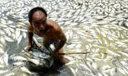 """Những dòng sông """"chết"""" ở Trung Quốc"""
