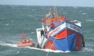 Tàu Cảnh sát biển cứu 10 thuyền viên trên vùng biển Phú Quốc