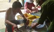 Tẩm hóa chất có chữ Trung Quốc nấu mỡ để kiếm lời