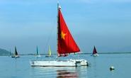Hơn 60 tay đua thuyền buồm chào năm mới
