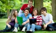 Hợp tác chiến lược du học -  hướng nghiệp Mỹ
