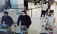 Nghi phạm khủng bố Paris, Brussels liên tiếp sa lưới
