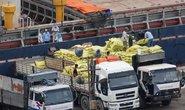 Trầy trật sàn giao dịch vận tải
