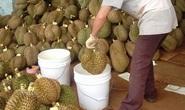 Mối nguy hiểm khi ăn trái cây tẩm hóa chất