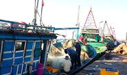 Băng nhóm giang hồ bảo kê cảng cá Phước Tỉnh