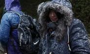 Đông Bắc Á co ro trong giá lạnh