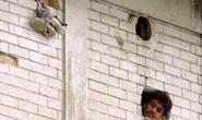 Giải mã vụ hơn 100 người bị chặt xác, ném xuống cống nhà tù