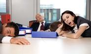 8 mối liên hệ giữa giấc ngủ và năng suất làm việc bạn cần biết