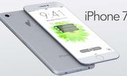 iPhone 7 lộ ảnh thật, tăng bộ nhớ đến 256 GB