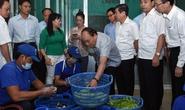 Thủ tướng vi hành, ăn phở, uống cà phê ở TP HCM