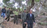 Lại phát hiện thêm vụ phá rừng Sơn Trà