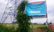 """Bất động sản khu Tây Bắc TP HCM """"sốt"""" ảo"""
