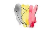 Sao đồng loạt cầu nguyện cho nước Bỉ