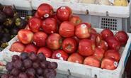 Thu giữ gần 1 tấn trái cây Trung Quốc và nửa tấn nội tạng bẩn