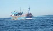 Cứu nạn thành công 8 ngư dân tàu cá Bình Định