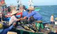 Phản đối tàu Trung Quốc cướp phá tàu cá Việt Nam