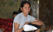 Chưa thể khẳng định gạo từ thiện không có độc