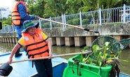 CNVC-LĐ tham gia bảo vệ môi trường
