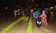 Biên Hòa: Ngập đến đầu người, dân bơi cứu đồ đạc