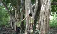Bộ NN-PTNT đề nghị dừng xây thủy điện tại Vườn quốc gia Yok Đôn